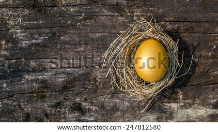 Golden egg in a nest on an old wooden background with empty space for adding text: A golden egg opportunity - stock photo