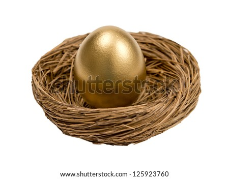 Golden Egg In Nest Isolated On White Background - stock photo