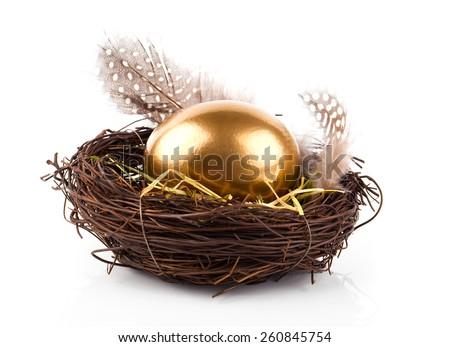 Golden egg in nest on white background - stock photo