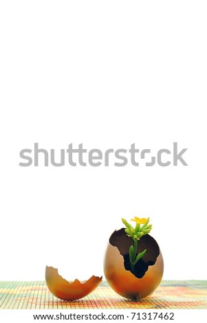 Golden egg, new life concept and easter time - stock photo