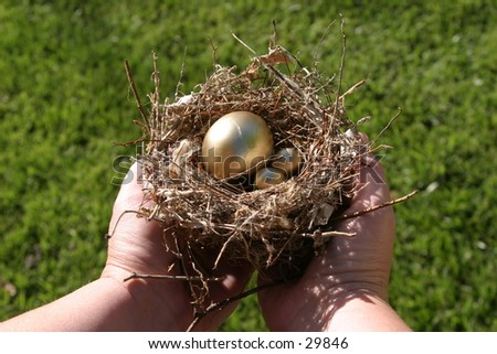 golden eggs in a bird nest being held by a pair of hands representing finincial freedom and security in the image of a Nest Egg - stock photo