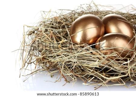 golden eggs in nest isolated on white - stock photo