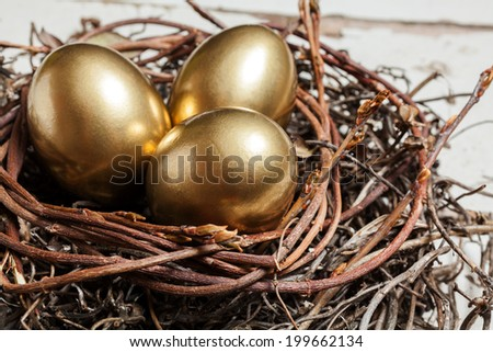 Golden eggs in nest on white vintage wooden background  - stock photo