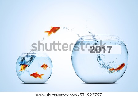 Coloring Page Fish Bowl Empty : Jumping fish stock images royalty free & vectors
