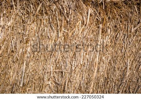 Golden hay background, bale, straw, haystack - stock photo