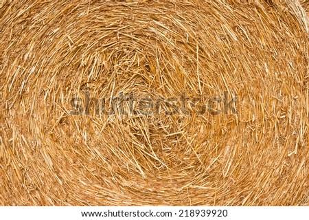 Golden hay background, bale, straw, haystack, yellow - stock photo