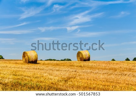 Golden haye bales in the harvest time in Germany