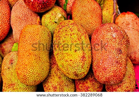 Golden Jack fruit for sale at the open market, Thailand - stock photo