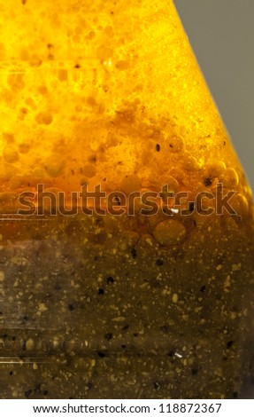 Golden mixture inside a glass bottle, Macro shot. Could be a salad dressing, could be a science project