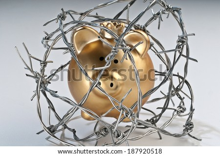 Golden piggy bank secured with barbed wire. - stock photo