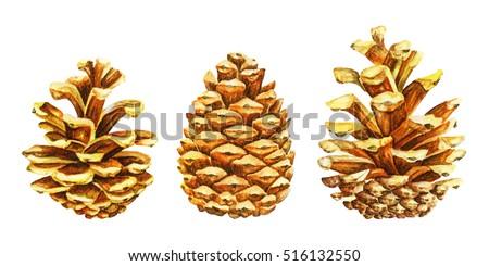 golden pine tree cones christmas symbol stock illustration 516132550