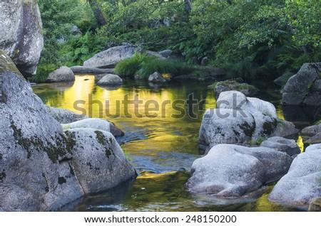 golden Pond - stock photo