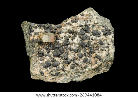 Golden pyrite crystal and clinochlore aggregates from alpine type vein - stock photo