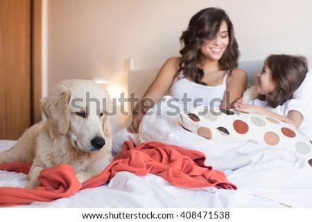 Rate Checkup Dog Treats