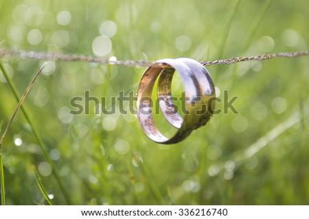 golden rings - stock photo