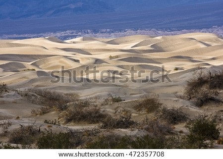 Golden sand dunes at Death Valley National Park, California.