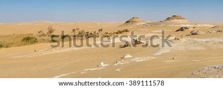Golden sand in Sahara desert in Egypt, dry and isolated landscape, big size panorama - stock photo
