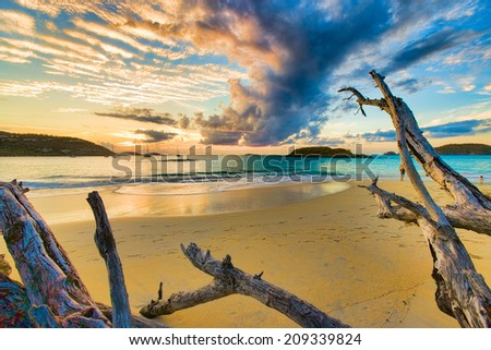 Golden sunset over driftwood on a sandy beach in Cinnamon Bay, St. John, USVI - stock photo