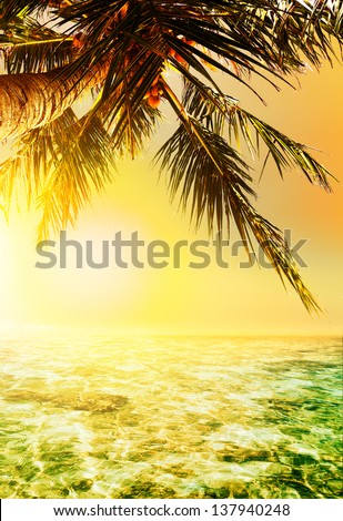 Golden sunset over the tropical sea