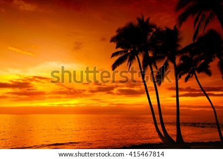 Golden tropical sunset with silhouette palm trees - stock photo
