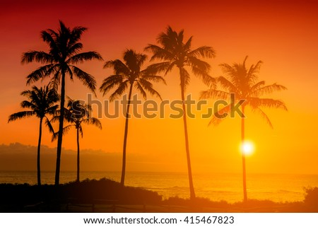 Golden tropical sunset with silhouette palm trees