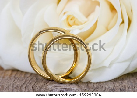 Golden wedding rings with white rose in the background - stock photo