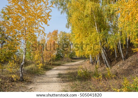 Golden wood in Samara Region, the Tsaryov Hill.