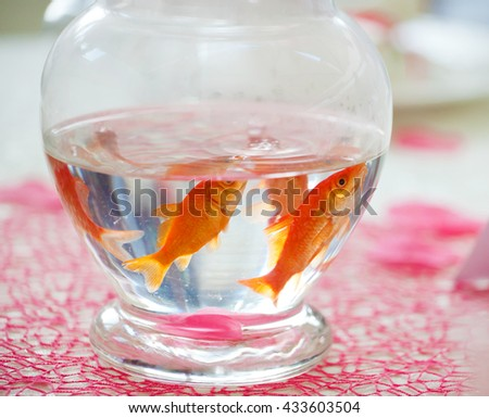 Goldfish in ampule used as centerpieces in a party.