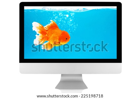 Goldfish stray their world out of their Aquarium Into a virtual world - stock photo