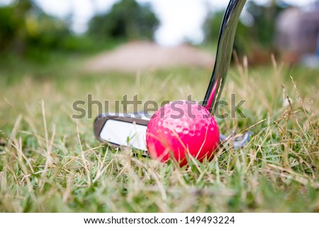 Golf ball and putter on the golf couse . - stock photo