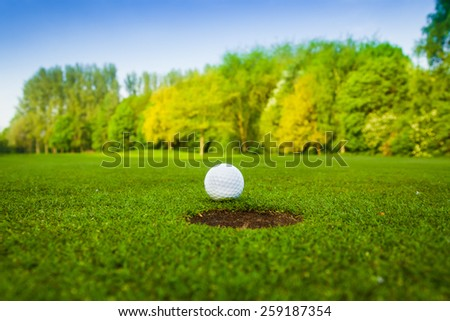 golf ball. golf ball in fairway - stock photo