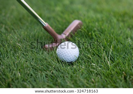 golf ball lying on the grass next to the stick, close of putter and ball