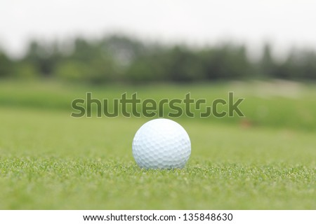golf ball on a green in a sunny day