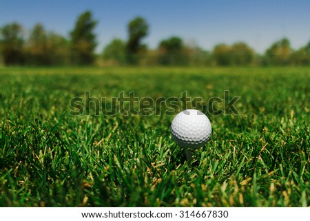 Golf Ball on a Tee at a Field