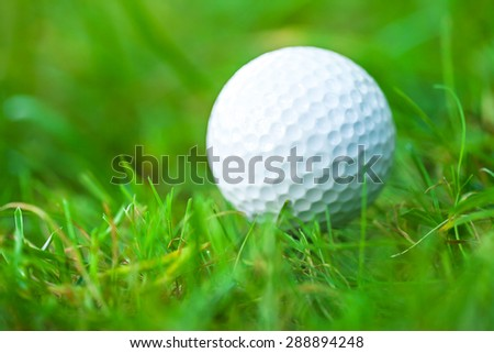 Golf ball on course. Small depth of field. - stock photo