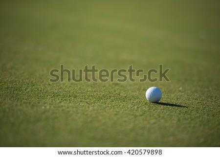golf ball on fresh green grass of course - stock photo
