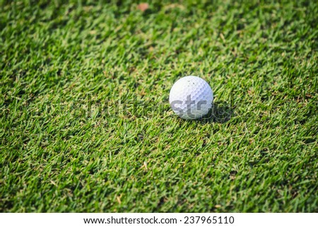 Golf ball on grass in front of the green  - stock photo