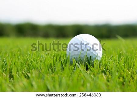Golf ball on green grass. - stock photo