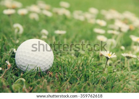 Golf ball on green grass of course close-up view - stock photo