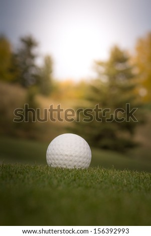 Golf ball on green over a blurred green. Shallow depth of field. Focus on the ball