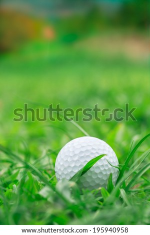 Golf ball on Rough grass but keep going to the holes - stock photo