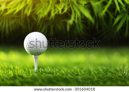 Golf ball on tee ready to be shot - stock photo