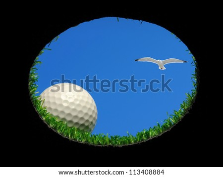 golf ball on the edge of a golf hole with a seagull flying above