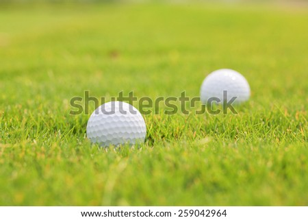 Golf ball on the grass - stock photo