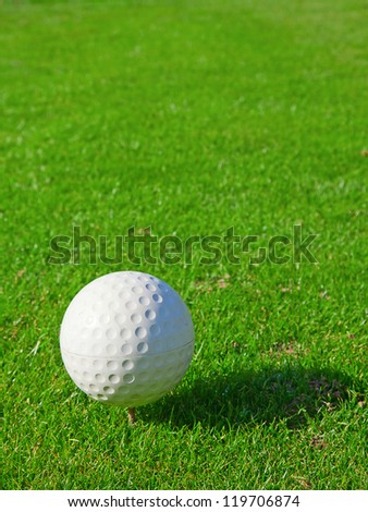 golf ball on the green grass of the golf course - stock photo