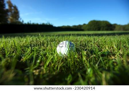 Golf ball on wet lush fairway - stock photo