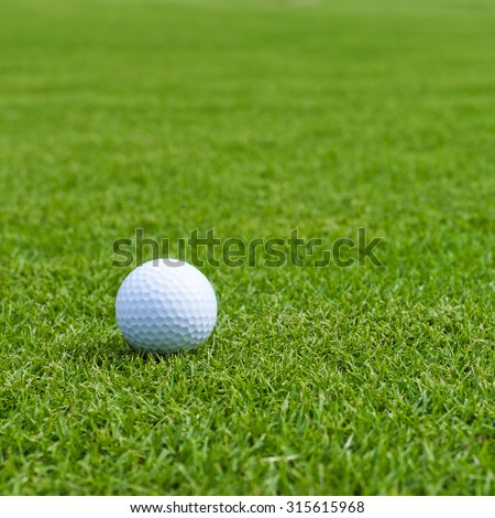 Golf ball sitting on a golf course putting green