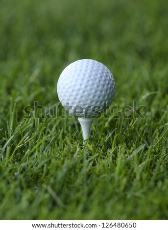 Golf Ball teed up on grass