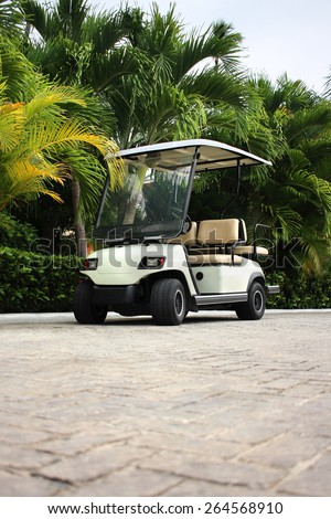 Golf cart at the tropical resort - stock photo