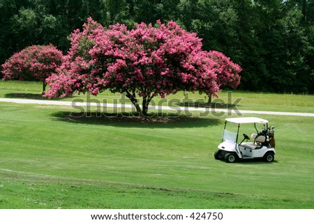 Golf Cart in front of Crape Myrtle